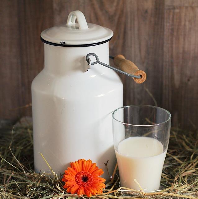 bandaska mléka