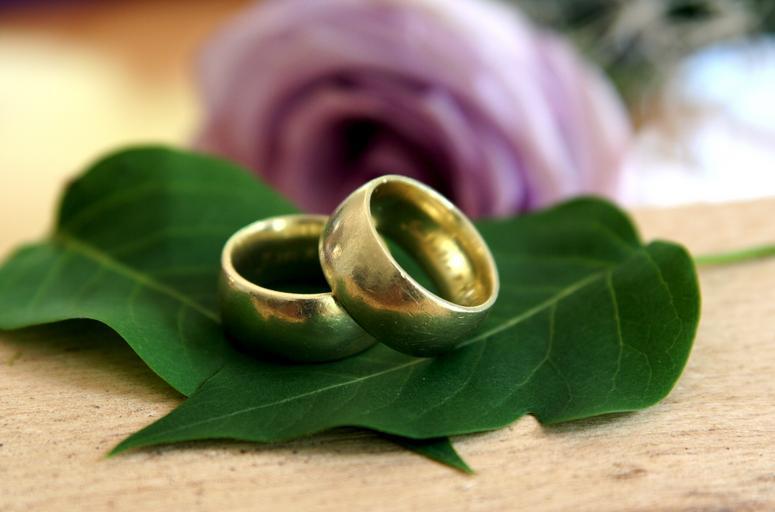 Zásnubné prstene na zelenom liste.jpg